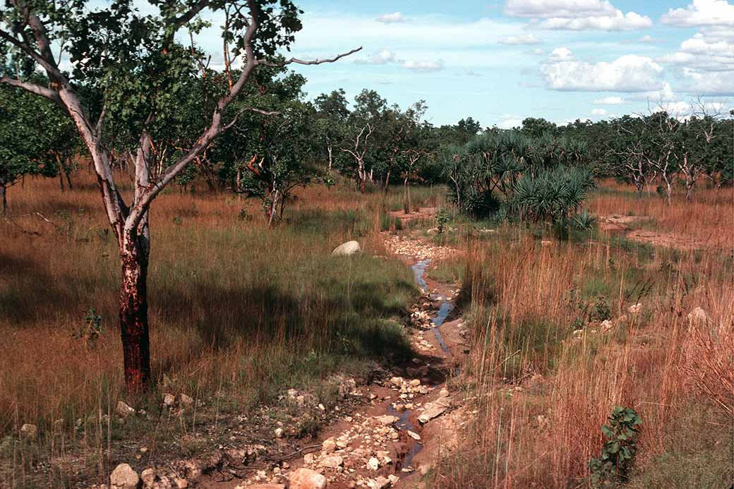 Near adelaide river top end northern territory for Landscaping adelaide north